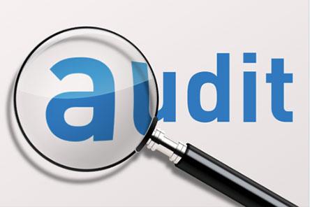 audit-logo.jpg (444×296)